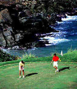 jobs for TV execuitves that like to golf in St. Thomas